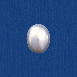Oval pearl flat base 8x10mm
